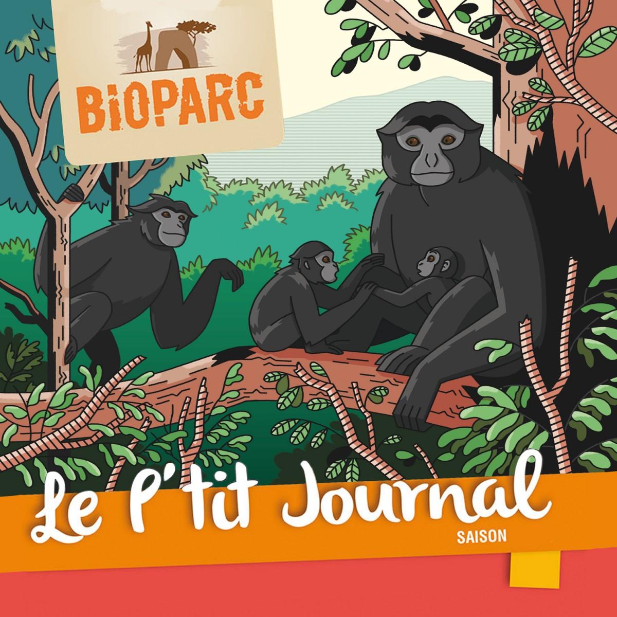 Mathieu Demore, Illustration jeunesse et Bande-dessinée Le p'tit journal - Bioparc de Doué la fontaine