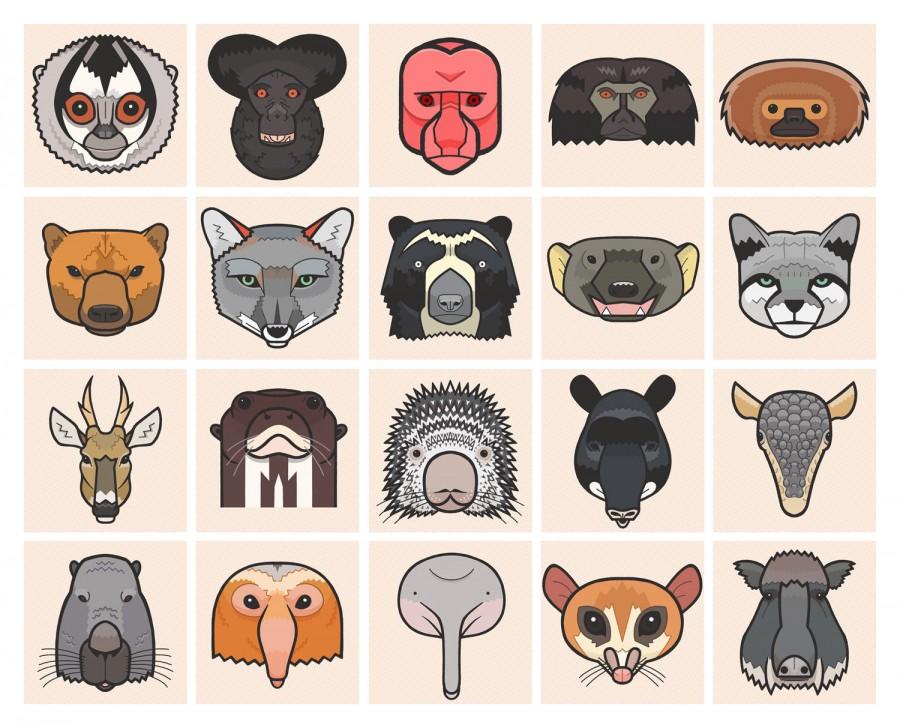 Mathieu Demore, Illustration jeunesse et Bande-dessinée Encyclopedie animalière Bestiaire méconnu - Mathieu Demroe