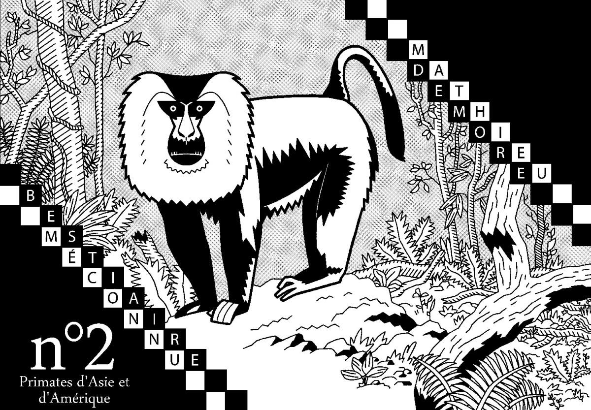 Mathieu Demore, Illustration jeunesse et Bande-dessinée Encyclopedie animalière
