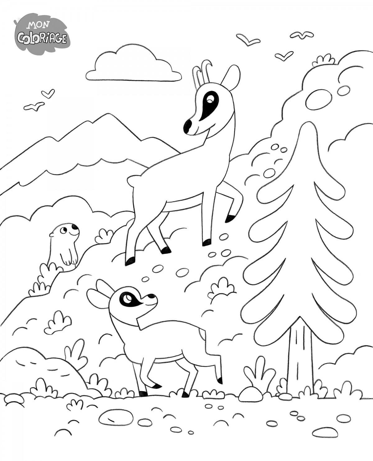 Mathieu Demore, Illustration jeunesse et Bande-dessinée Wakou