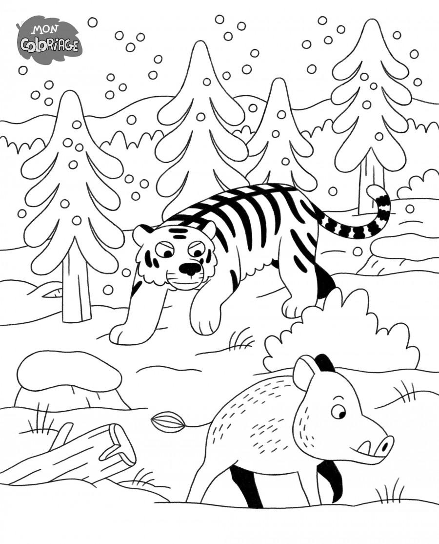 Mathieu Demore, Illustration jeunesse et Bande-dessinée Wakou Illustrations dans Wakou - Éditions Milan Presse - Mathieu Demore